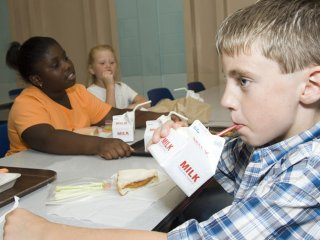 Child Health, Safety and Nutrition